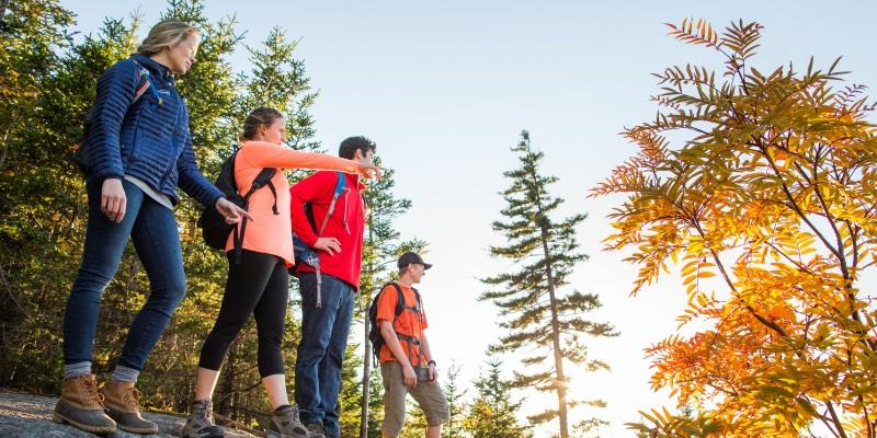 Fall hiking in Maine