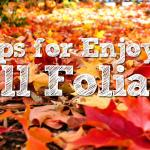5 Tips for Foliage